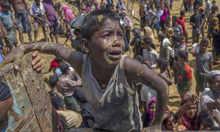 রোহিঙ্গাদের ওপর চালানো নিপীড়ন গণহত্যা নয় : মিয়ানমারের কমিশন